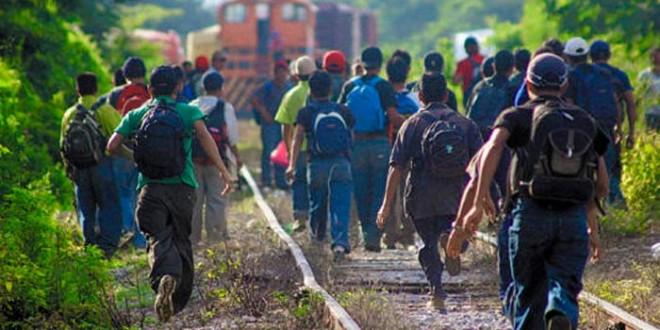 MÉXICO: Organizaciones deploramos la detención de personas migrantes y la agresión contra defensores.