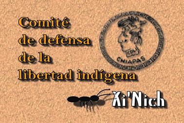 Palabra de la organización Xinich, con respecto al conflicto de la Selva Lacandona.