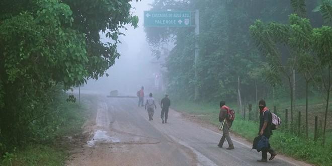 Despojo al ejido Bachajón «ambición por establecer el control y explotación de las tierras dentro del Proyecto Mesoamérica», CDMCH