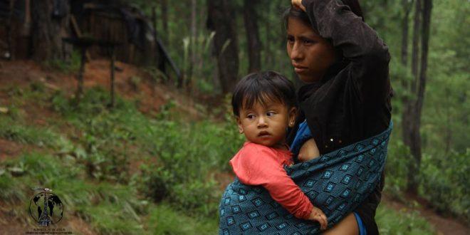 """""""Hemos aprendido a organizarnos, a perder el miedo"""", familias tojolabales desplazadas en Chiapas"""