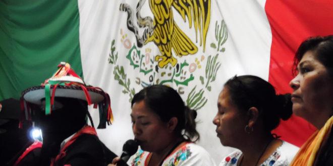 Pronunciamiento conjunto del CNI y el EZLN por la libertad de la hermana mapuche Machi Francisca Linconao Huircapan