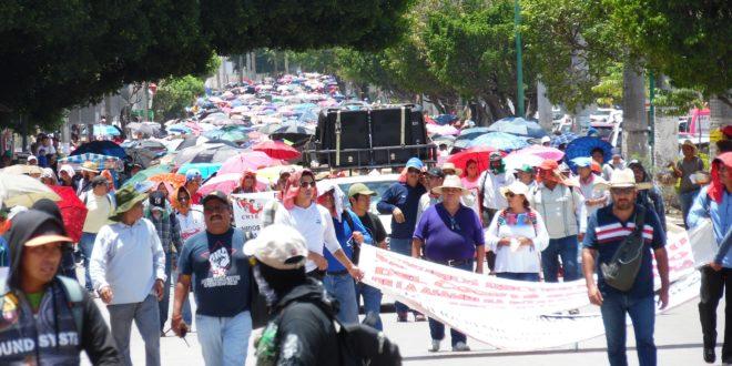 AED_CNTE Chiapas: «cadena de cambios no oferta la totalidad de espacios y horas disponibles», denuncia