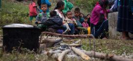 México Covid_19: «Cuando se impone la ganancia sobre la vida», CAM_UNAM