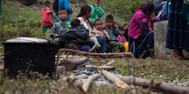 4T da prioridad a megaproyectos, indígenas «sin ayuda humanitaria, sin retorno y sin justicia»