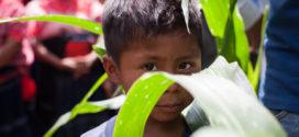 Aldama Chiapas: muestra fotográfica, «Les queremos en casa: con tus ojos y con tu corazón abracemos a mujeres, jóvenes y niñas desplazad@s»